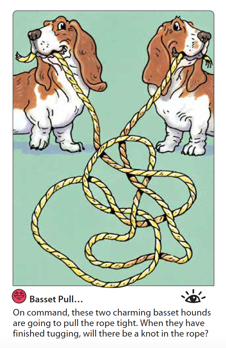 Basset Pull.png