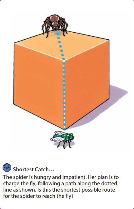 Shortest Catch.png