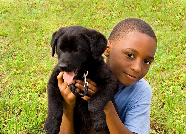 Pet dog with boy.jpg