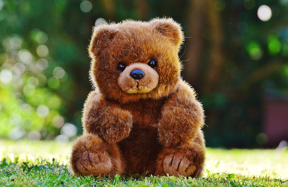 teddy bear alone.jpg